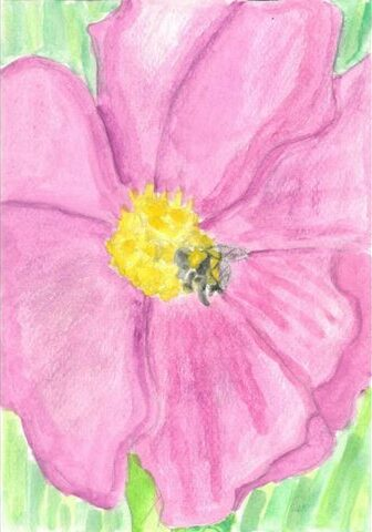 Bee landing on a flower by Evie Herman-Ball